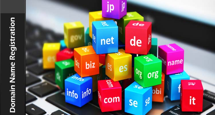 Domain Name Registration at E-Saver Technologies Market Leader for Web Hosting Solutions and; Services