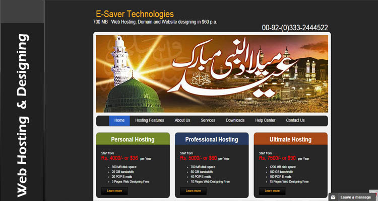 Web Hosting at E-Saver Technologies Market Leader for Web Hosting Solutions and; Services